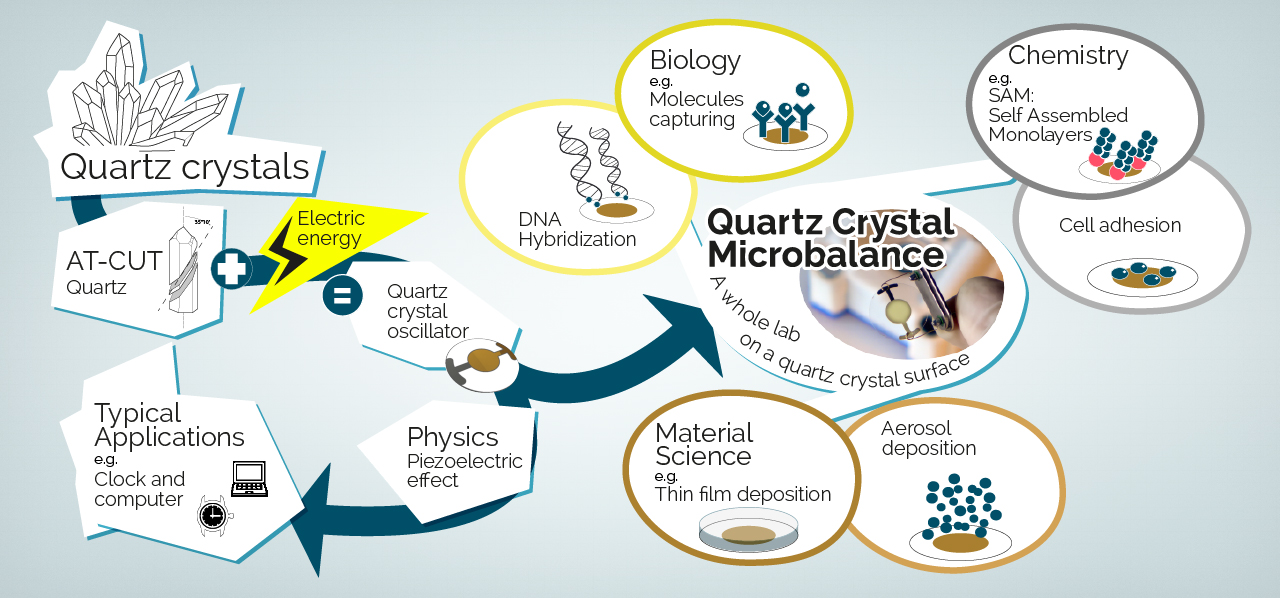 Quartz Crystal Microbalance Technology
